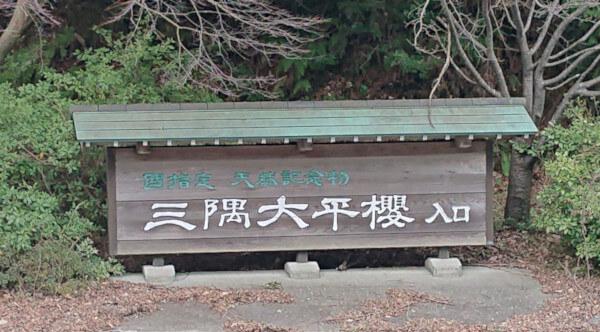 国指定天然記念物三隅大平桜入口の看板