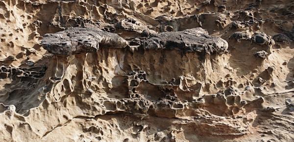 石見畳ヶ浦のキノコ岩