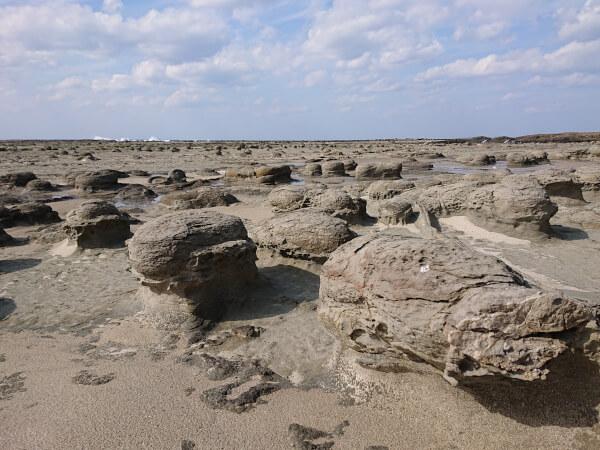 石見畳ヶ浦のノジュール